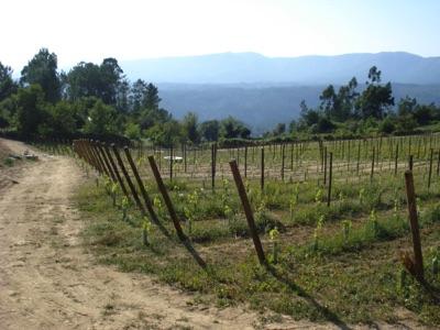 Ambiente Rural